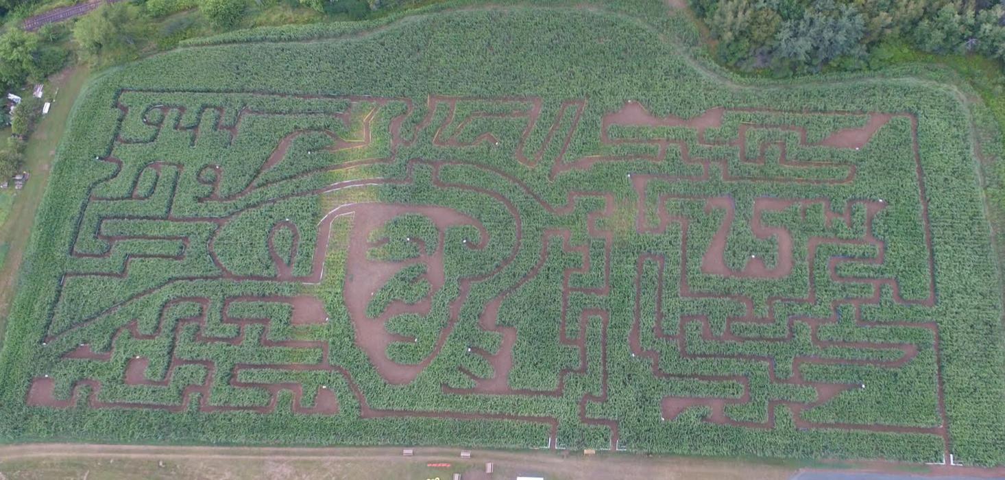 Maze Design 2 .jpg