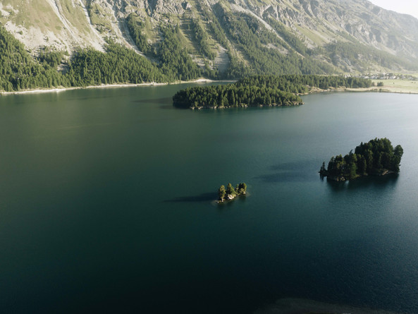 Lake Sils Summer Vibes