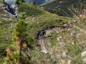 Engadin Mountains X Bike