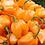 Thumbnail: Hot Peppers - 3 Varieties
