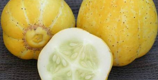 Cucumber: 4 Varieties