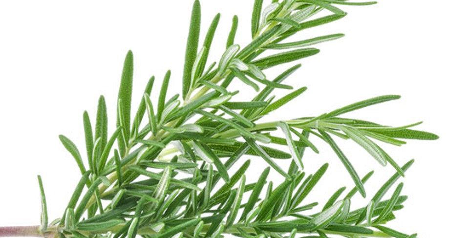 Herbs & Flowers: 13 Varieties