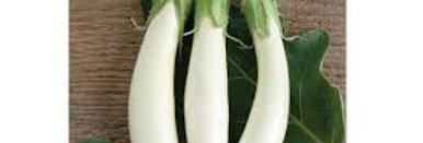 Eggplant- price per plant!