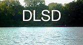 DLSD.jpg