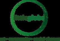 littleglobe logo.png