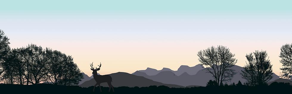 Deer Heart Consulting Envision Goals Str