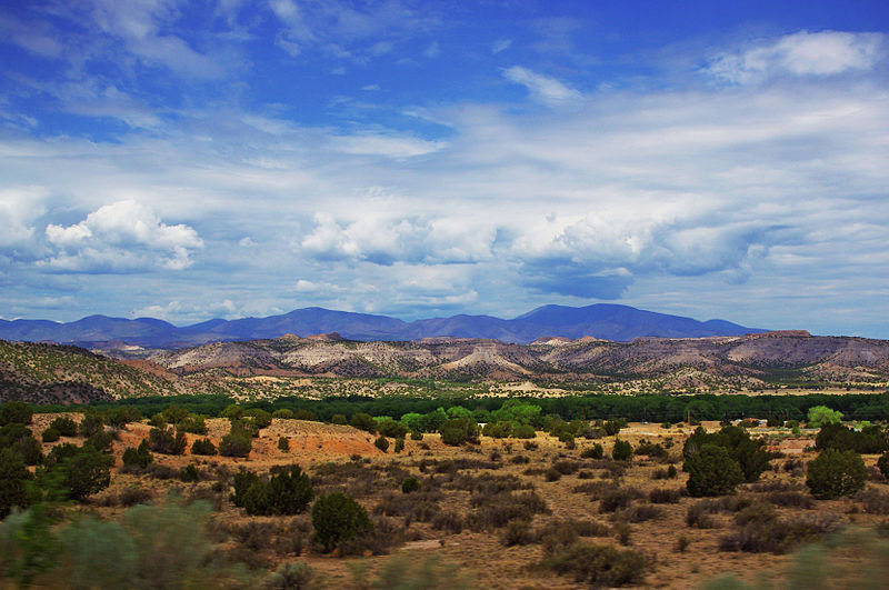 Desert Landscape New Mexico by Thomas Sh