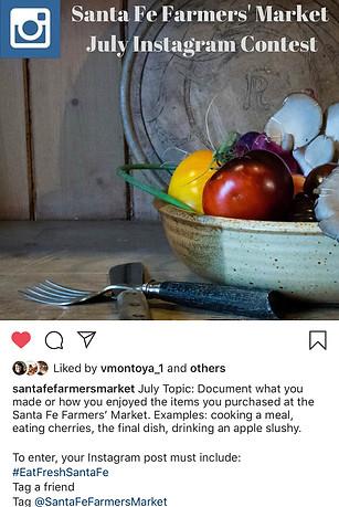 Sample Instagram Post photo by Lisa Kantor