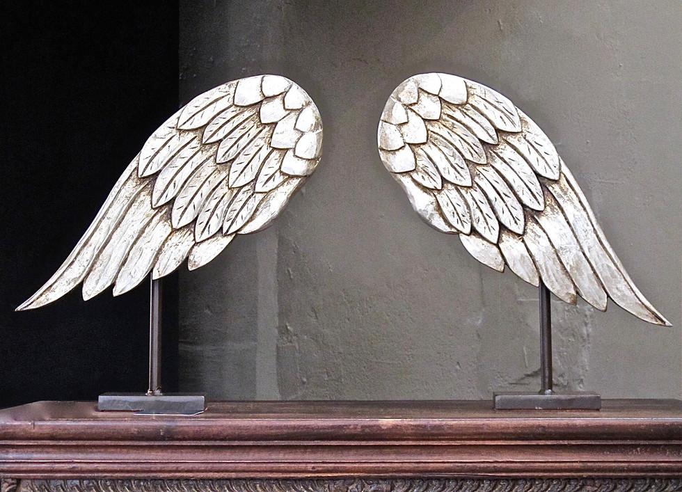 San Miguel Angel Wings
