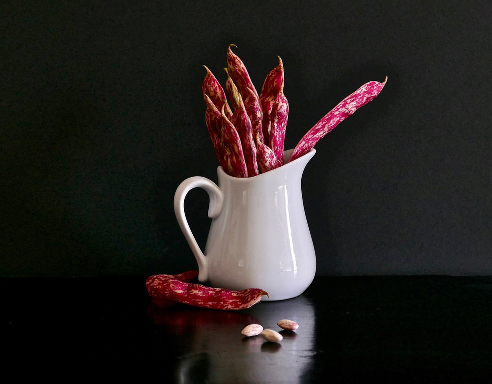 Cranberry Beans and Pitcher