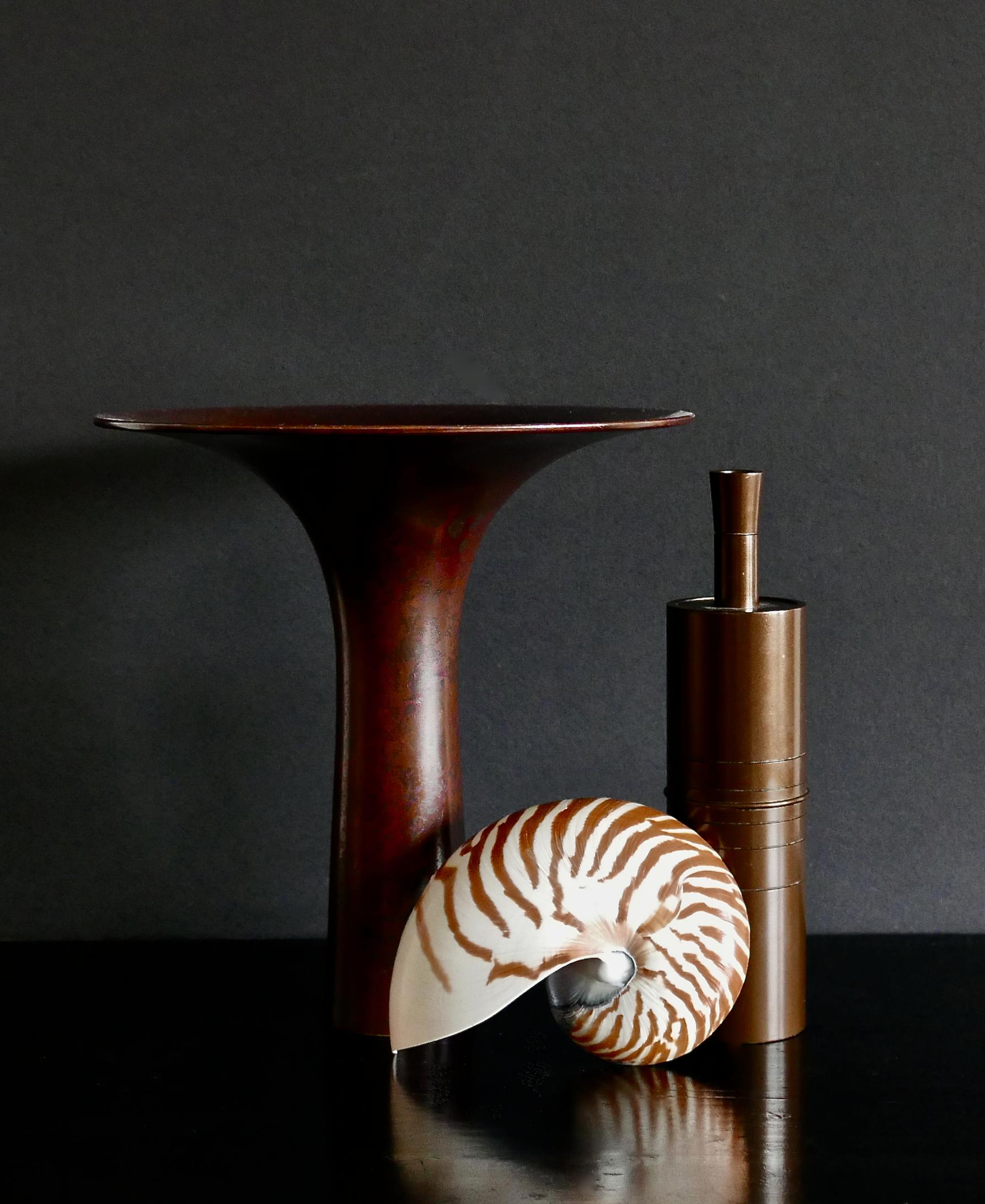 Japanese Bronzes and Nautilus