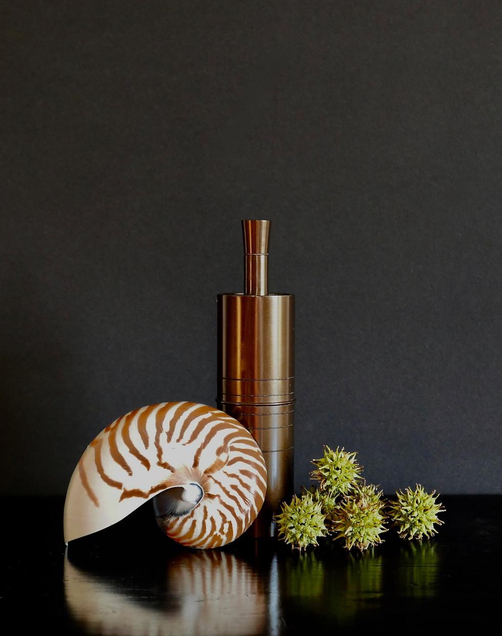 Nautilus, Bronze, Liquidambar Tree Seedpods