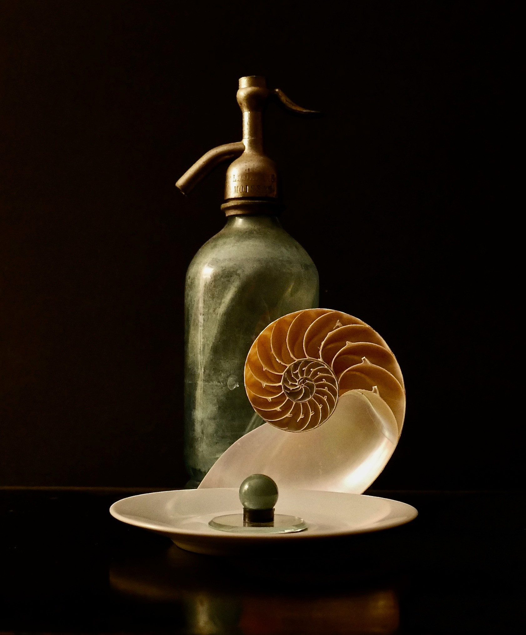 Blue Seltzer with Halved Nautilus, West.