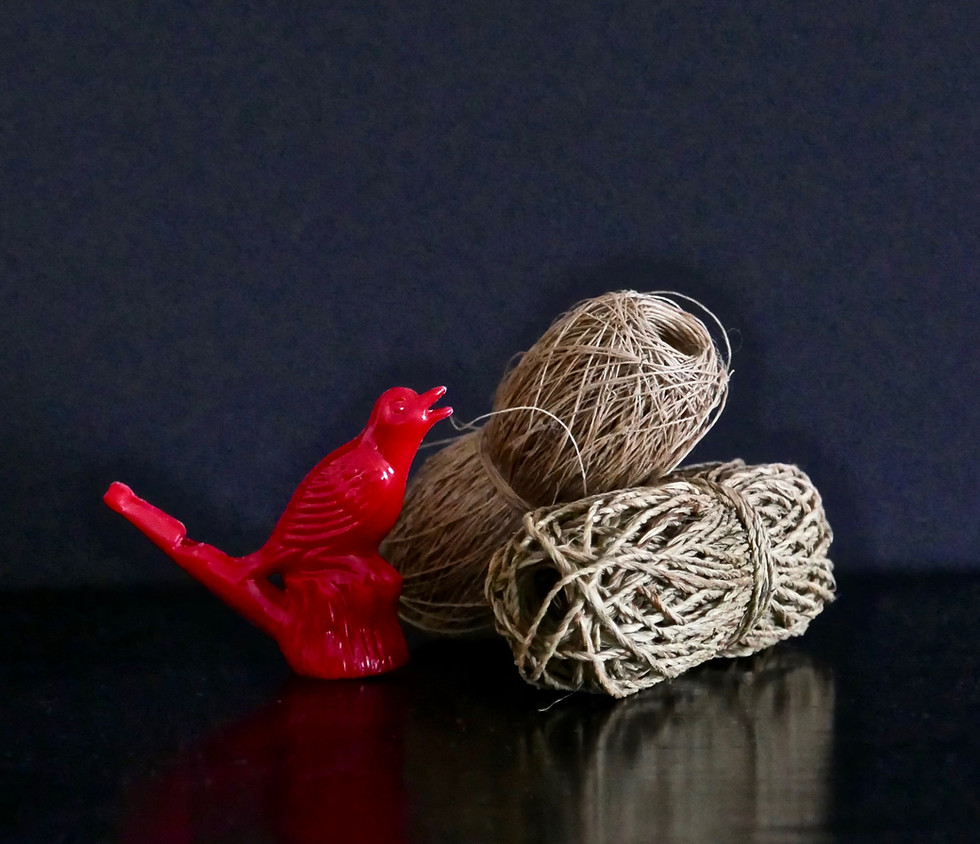 Mexican Whistle and Twine