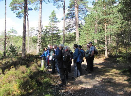 Saturday 12 May Walk: Grantown on Spey Through Anagach Woods to Cromdale    Leader Ian Suttie