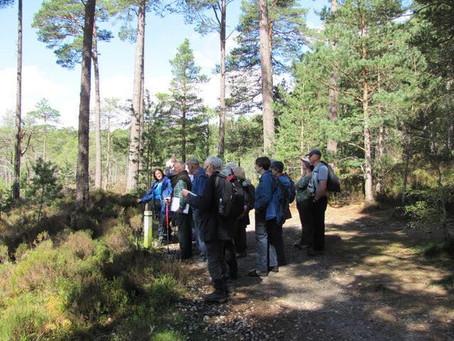 Saturday 12 May Walk: Grantown on Spey Through Anagach Woods to Cromdale    Leader Ian Suttie