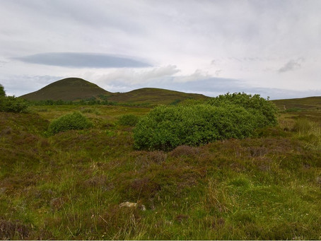 Club Outing to Cioch Mhor (by Dingwall) on 27 July