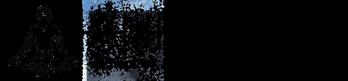 AnimusLogo-black-transparent.png