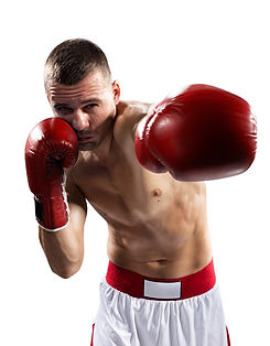 professional boxer are fighthing isolate