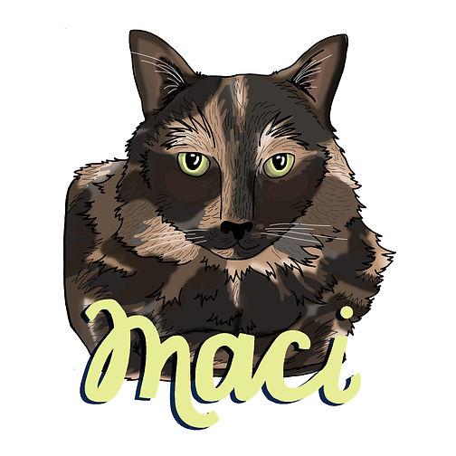 maci_opt1_Draft1.jpg