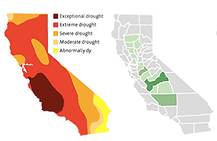 Droughtandalmonds_edited_edited.png