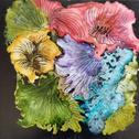 Multifloral.PNG