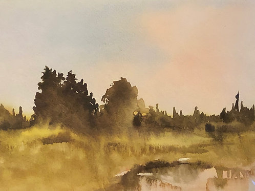 Landscape Study #4