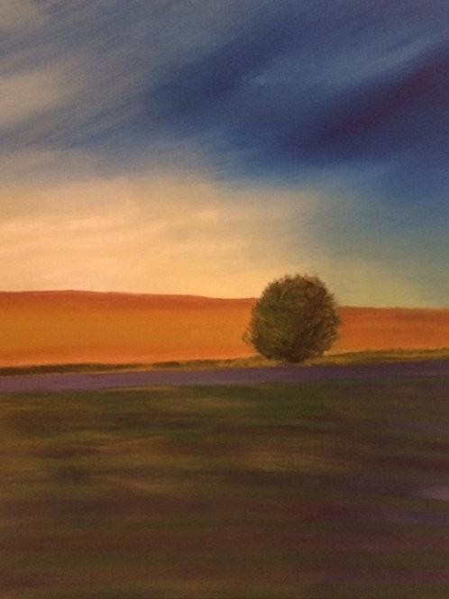 Prairie Calm