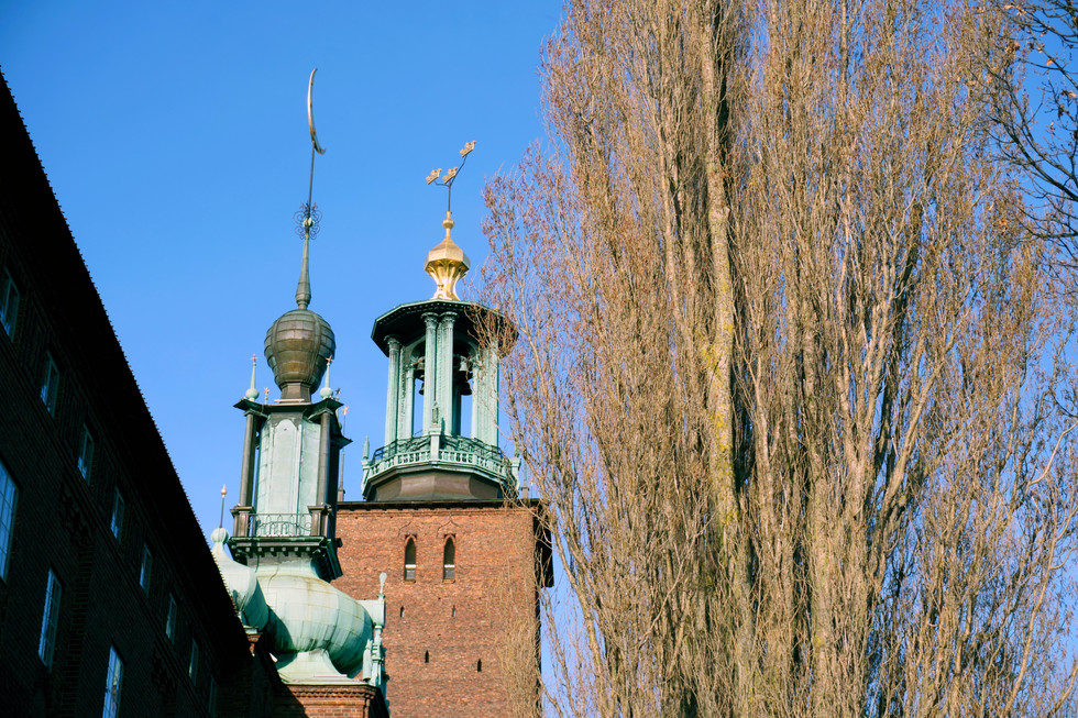 Stockholms stadshus (Cityhall)