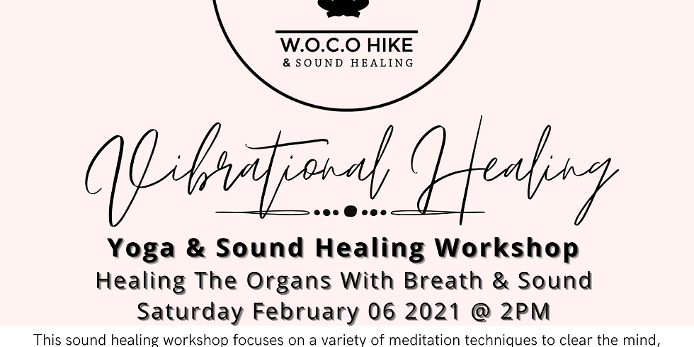 Vibrational Healing: Sound Healing Workshop