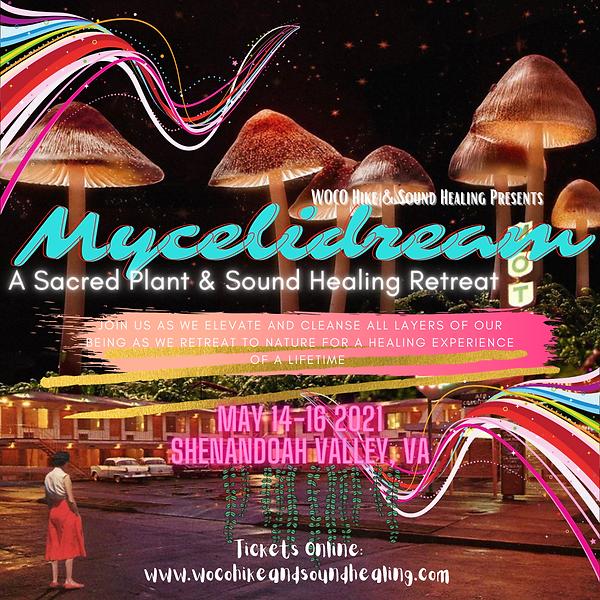 mycelidream2021.png