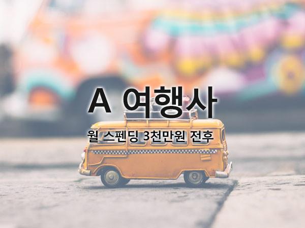 A여행사 / 월 스펜딩 3천만원 전후