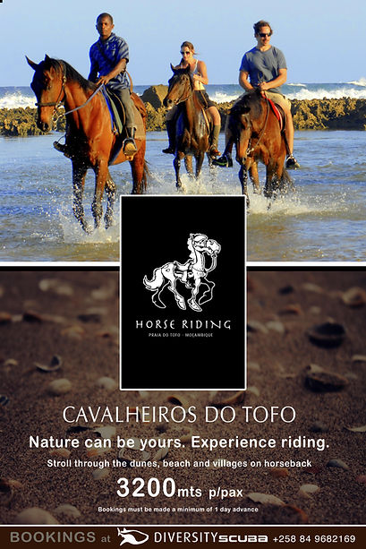 horseridingposter_cópia.jpg