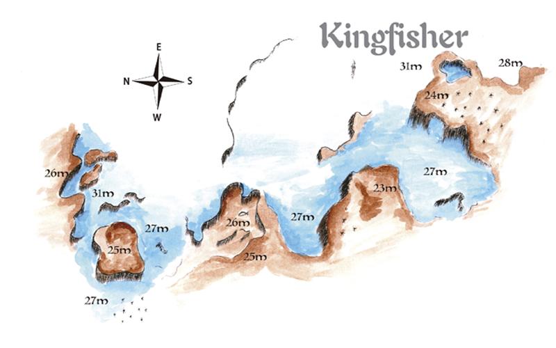 KINGERFISH