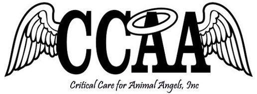 CCAA logo.jpg