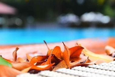 swimming-pool-2461422_1920_edited.jpg