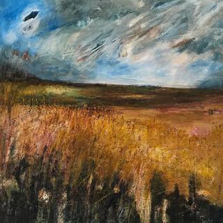 Norfolk Fields, mixed media, 100x100 dee