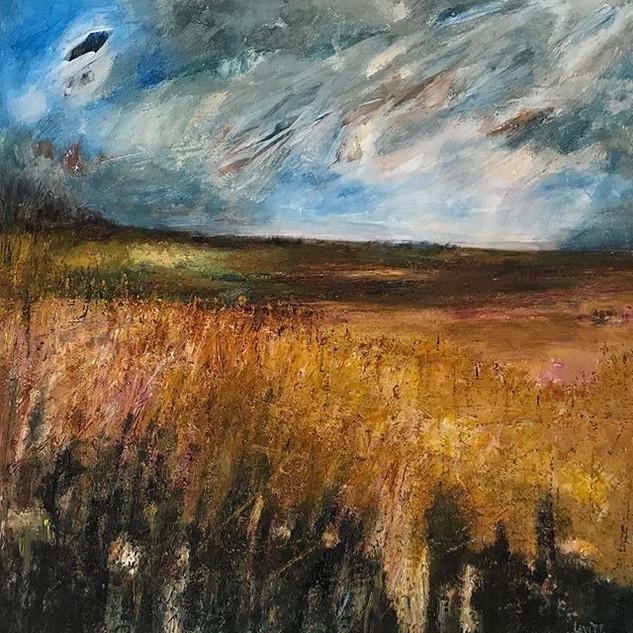 Norfolk Fields,