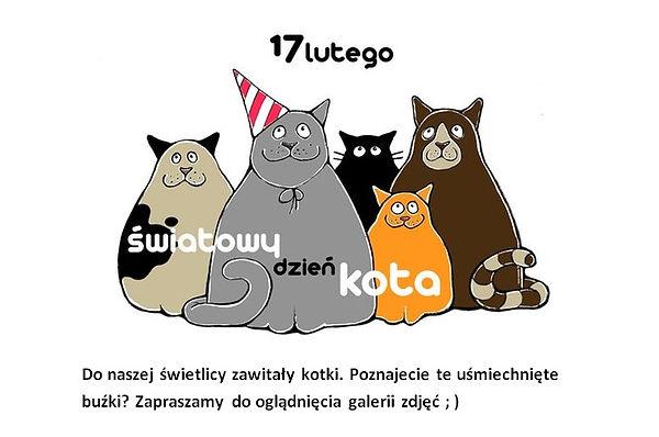 Koty.jpg