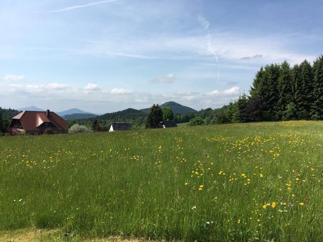 Fastenwandern in Lückendorf