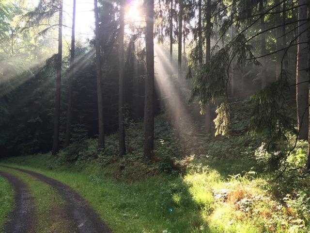 Fastenwandern und das Licht der Seel