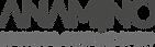 ANAMINA-Logo.png