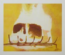 Oheň 2/ Fire 2