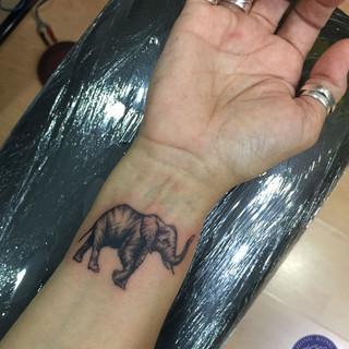 little elephant.jpg