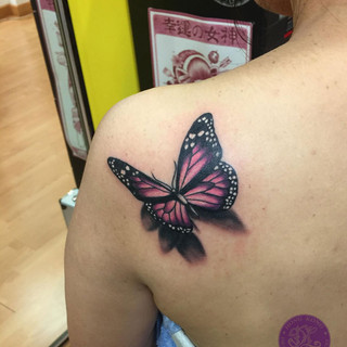 classic butterfly.jpg