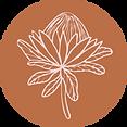 Main circle flower.png