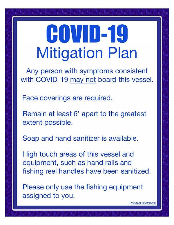Mitigationplan.jpg