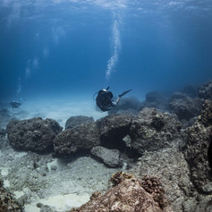 Rons Reef