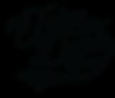 TJDS logo templatem2 copy.png