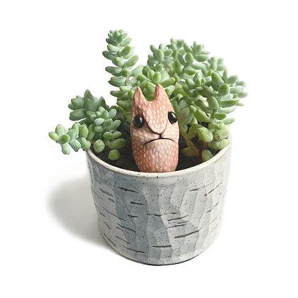 F O X - Plant Guardian